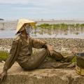 Madame THI VUON, autre bénéficiaire du programme, pour qui les nouvelles ressources autour de la mangrove (crevettes et palourdes), sont une source de revenus supplémentaires pour elle.