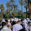 egypt055